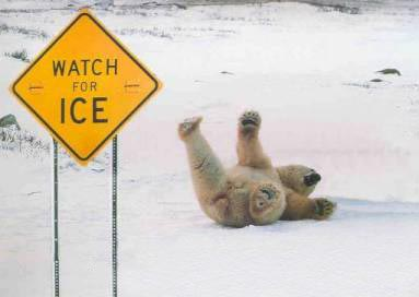 Watch for ICE! Stay Off the ICE!